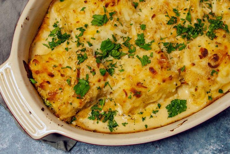 Creamy Chicken Lasagna Roll Ups-The Seasonal Junkie
