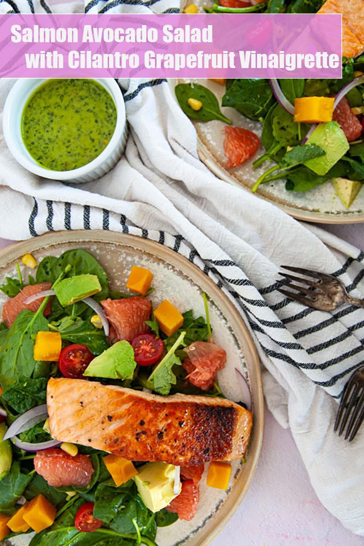 Overhead view of Salmon Avocado Salad with Grapefruit Vinaigrette