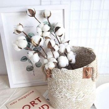 Cotton for vase November Decorations